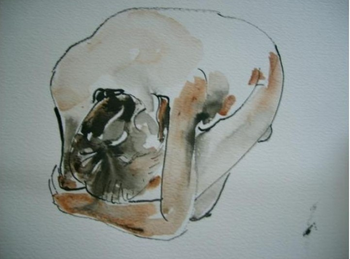 Life Drawing in December 2021 : rounding off the year