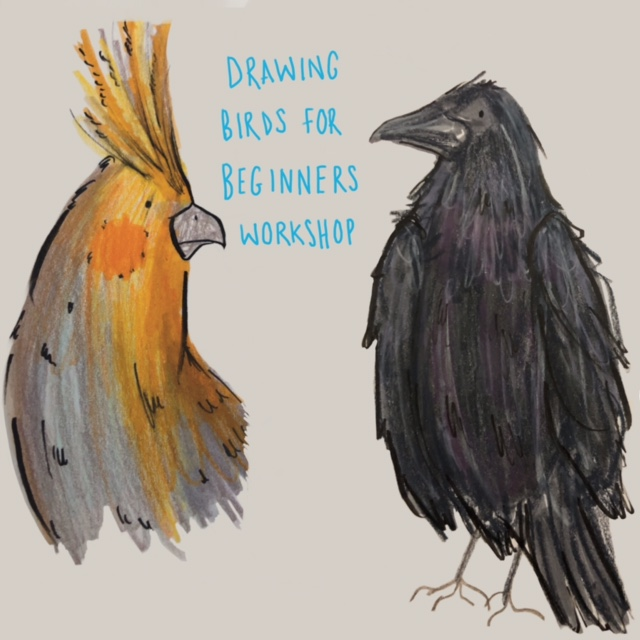 Learn to draw birds with Mel from The Mighty Mindcircus
